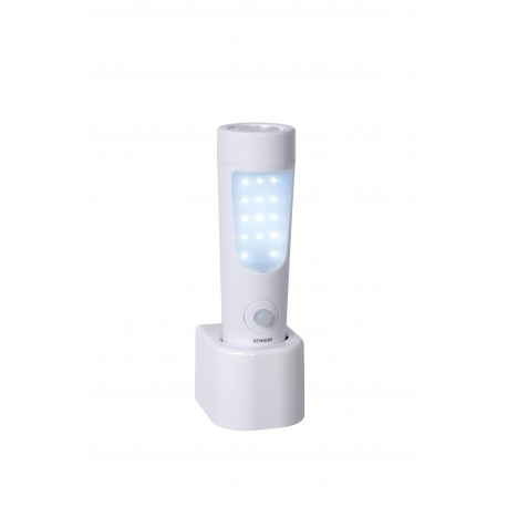 TORCHE RECHARGEABLE BO-LED