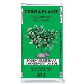 TERRAPLANT PLANTATIONS
